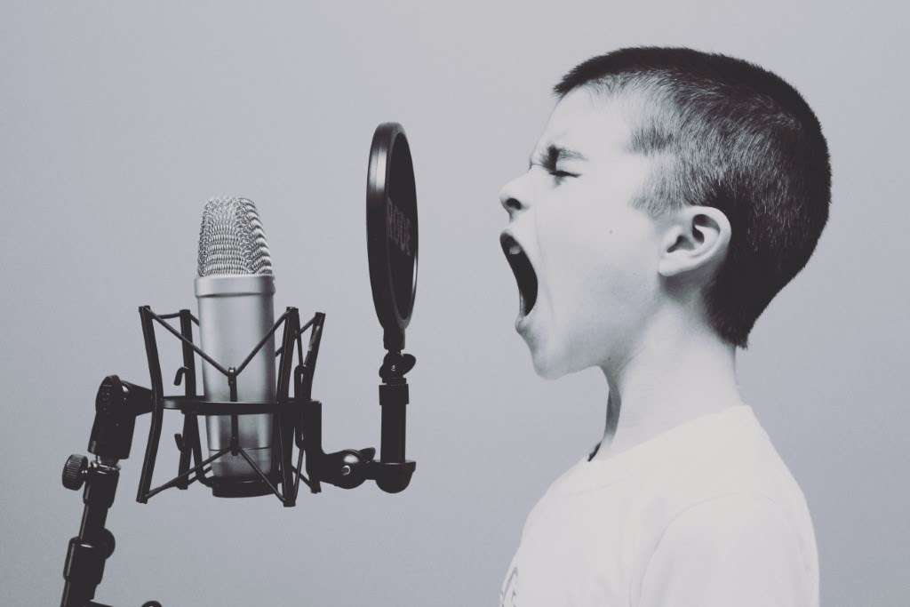 11 popular categories of professional voiceover services